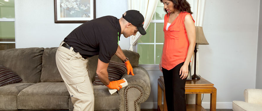 Lititz, PA carpet upholstery cleaning