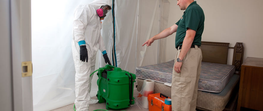 Lititz, PA mold removal process